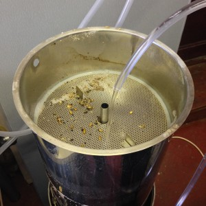 Testing The Grainfather (11)